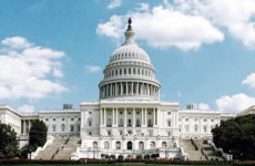Small Group National Mall & Capitol Hill Combo Walking Tour