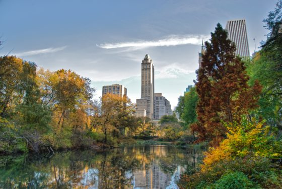 The Essential Central Park Guided Walking Tour